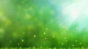 LINE綠色背景圖