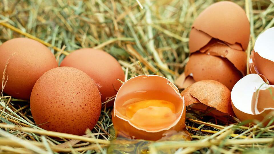 雞蛋用鹽水洗