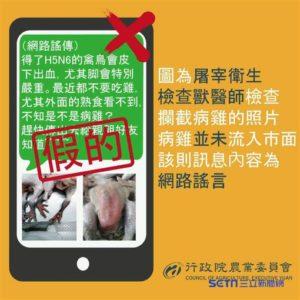 得了H5N6的禽鳥會皮下出血(圖/農委會提供)