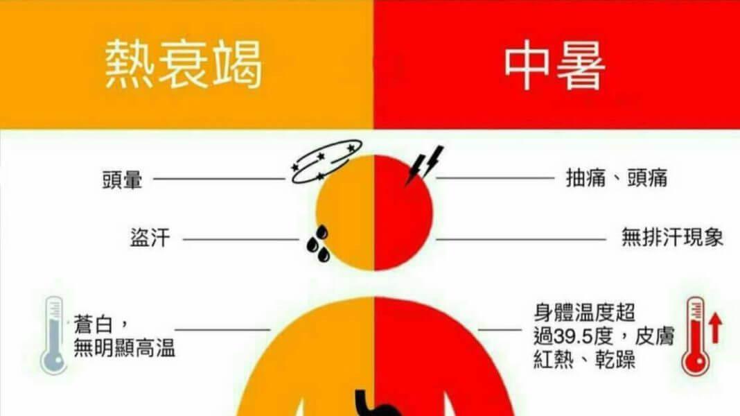夏日健康小常識,中暑、熱衰竭怎麼分?