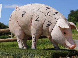 越南病毒豬肉走私流入中國,最好半年之內不吃豬肉?(圖片來源/https://pixabay.com)