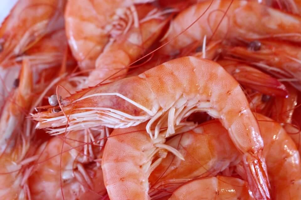 火鍋煮蝦飄橘紅物
