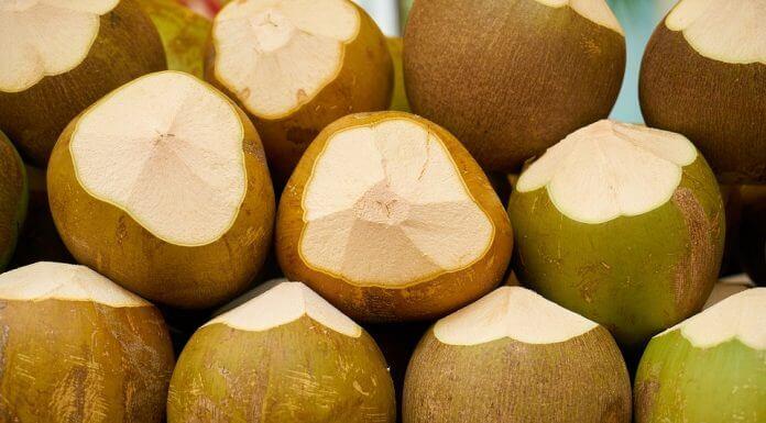 椰果是椰子做的嗎