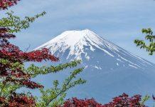 來點Sense/icoca、 西瓜卡 用途這麼廣?!日本交通卡使用大全告訴你!(圖片來源:https://pixabay.com)