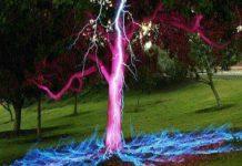 攝影師達倫.皮爾遜拍到 閃電打在一棵樹上 的照片?錯!這是後製而成的藝術照