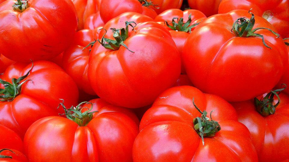 空腹不能吃番茄
