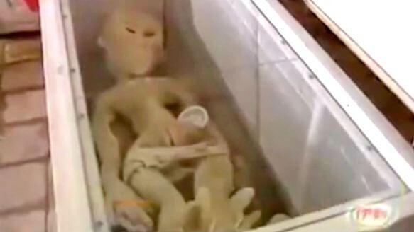 山東濱州市有人 電死外星人 ?2013年的假故事別再出來騙人啦!