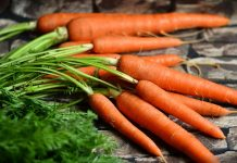 吃紅蘿蔔幫助視力(圖翻攝自網路)