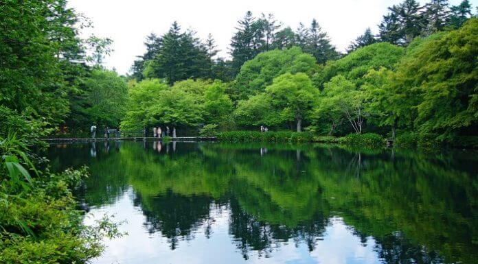 來點Sense/2019輕井澤攻略! 東京輕井澤 一日遊,景點、交通全收錄(Photo via Wikimedia, by 663highland, CC License)